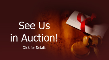 See Us In Auction